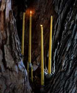 beeswax candles made with pure beeswax